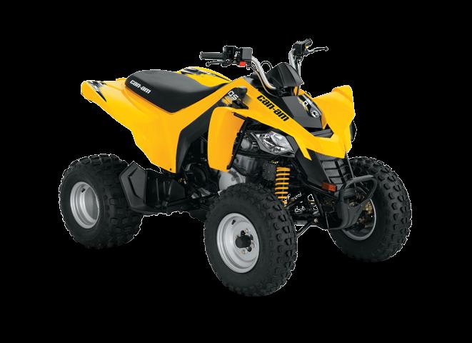 Квадроцикл  DS 250