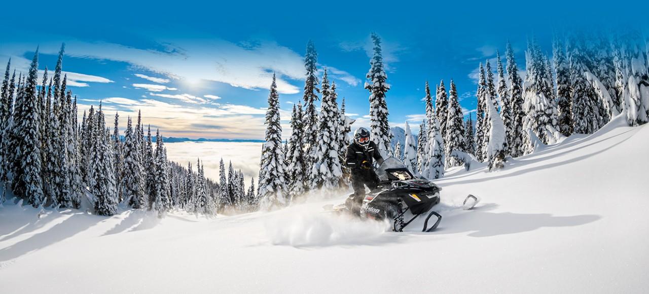 Дорогие снегоходы BRP