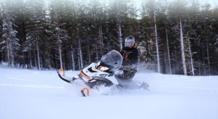 Утилитарные снегоходы BRP