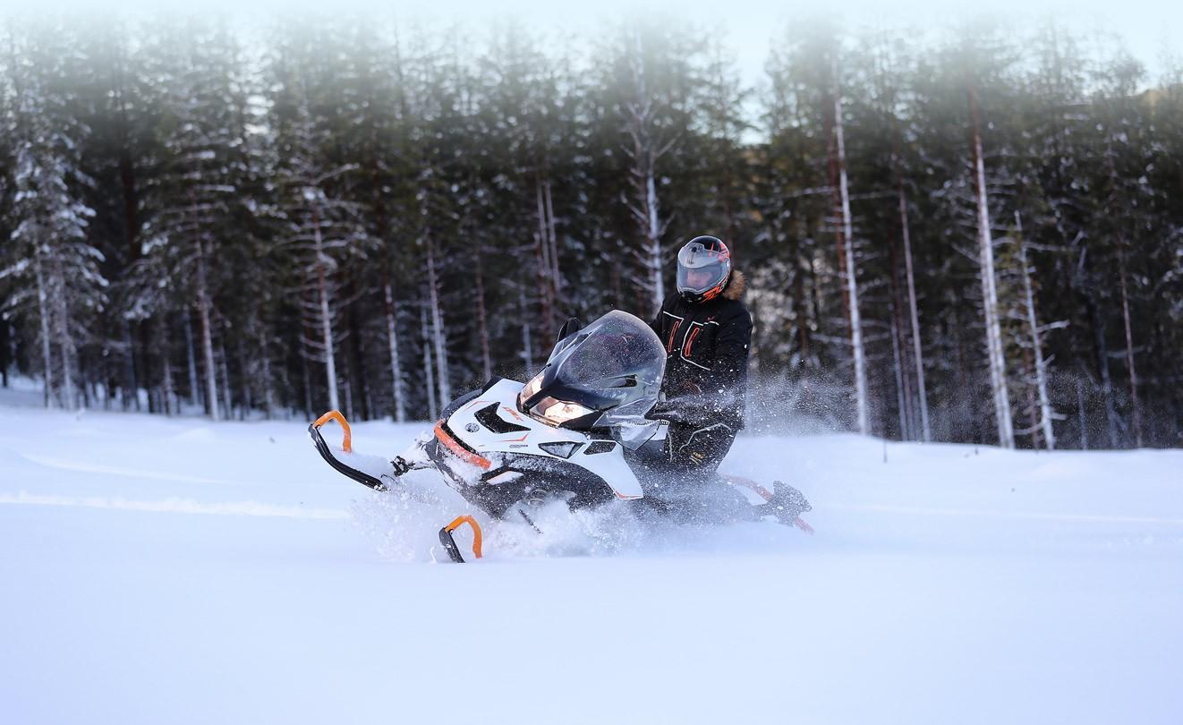 Двухместные снегоходы BRP Lynx