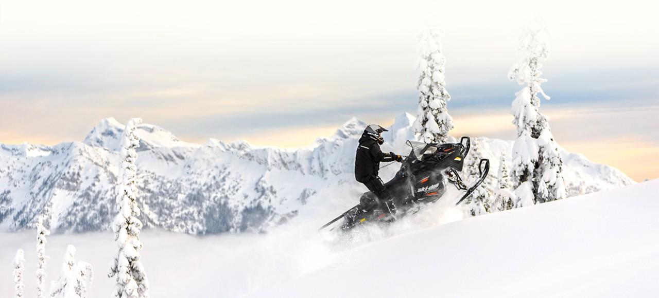 Двухместные снегоходы BRP