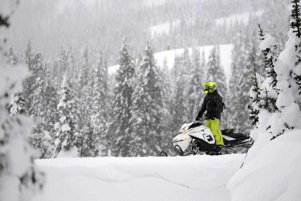 Ski-Doo Freeride 850 E-TEC 154/165